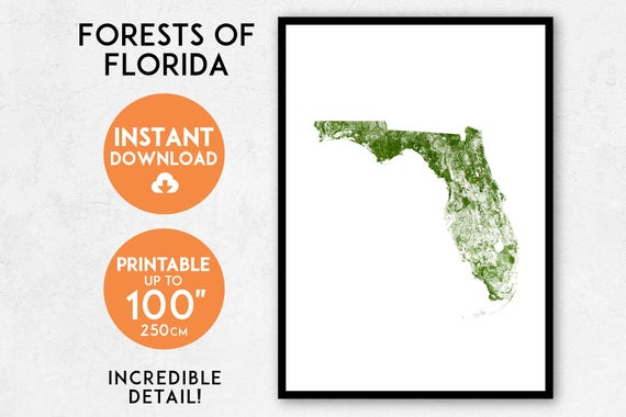 Florida Map Print Printable Florida Map Art Florida Print Etsy