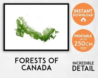 Canada map print, Printable Canada map art, Forests of Canada print, Canada map, Canada art, Canada poster, Canada wall art, Canada gift
