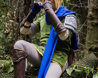 Link Armor for Zelda Cosplay The Legend of Zelda Videogames Hyrule Warriors