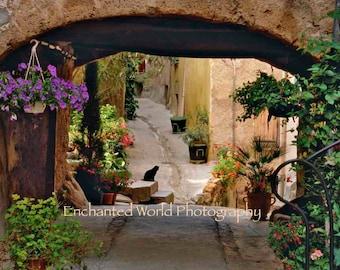France photography, Provence photo, Black Cat art print, French village photo, Europe travel photo, Cat photo, cat lover gift, Flower art