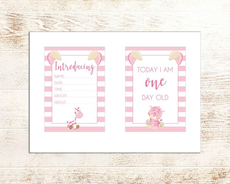 DIGITAL Download Monthly Milestones Printable Baby Milestone Cards 30 Milestones Pink Animal Baby Milestone Cards