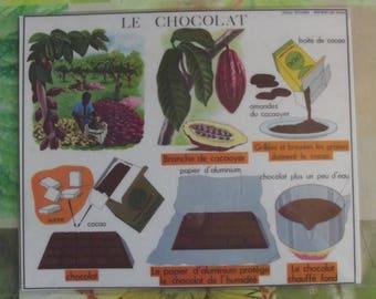 Wall decor, Set of Table 42 x 30 cm, the pod, tree, Fruit, Transformation, chocolate, cocoa bean, sugar, milk