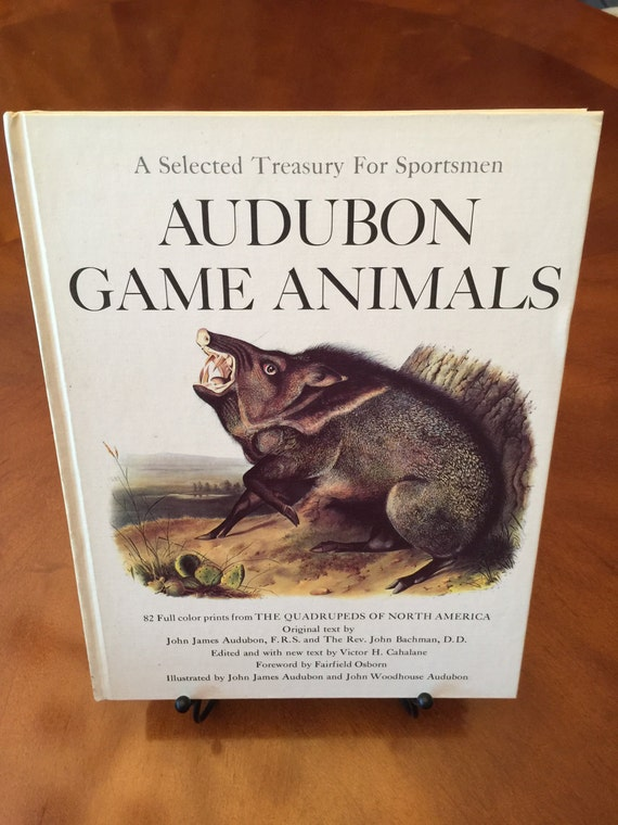 Audubon Game Animals  A Selected Treasury For Sportsmen