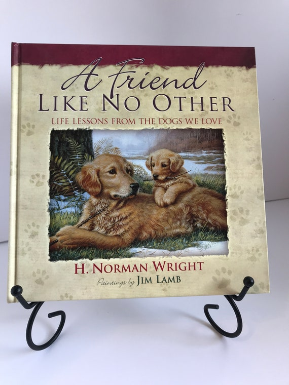 A Friend Like No Other  Life Lessons From The Dogs We Love