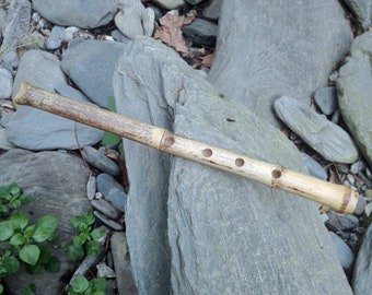 SHAKUHACHI JINASHI 1.4 in G flute  (this is the note that sounds when you close all holes) with cap.