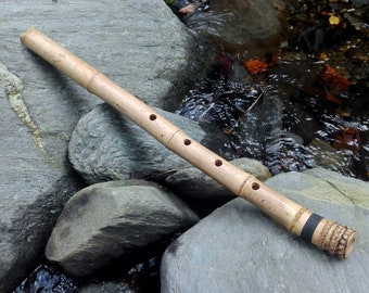 SHAKUHACHI JINASHI 2.1 in B flute  (this is the note that sounds when you close all holes) with cap.