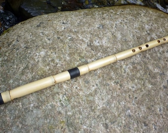 NEY flute in C# (this is the note that sounds when you close all holes).