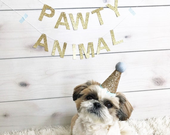 Pawty Animal Banner