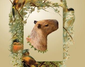 "Instant Download, 2 JPEGS (8X10"" & 11X14"") Capybara, Capybara Art, Capybara Photo, Victorian Photo, Victorian"