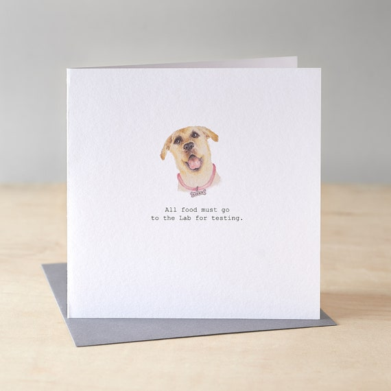 Funny labrador birthday card