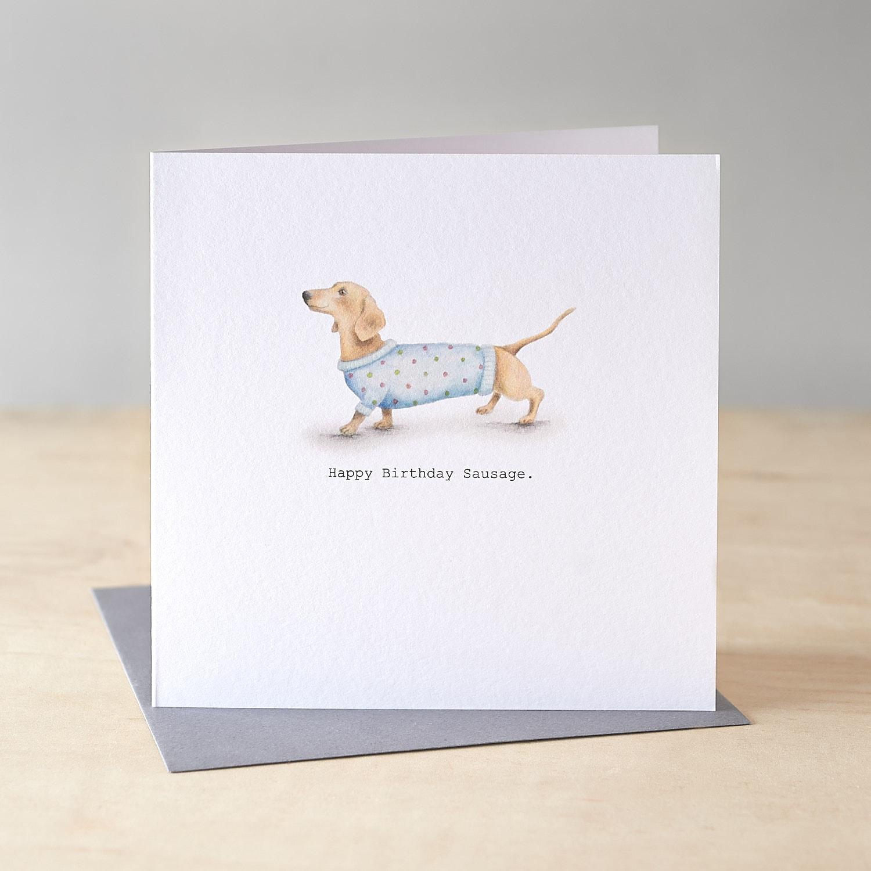 1 2 3 4 5 TODAY Dachshund sausage dog arranges bathtime message Birthday card