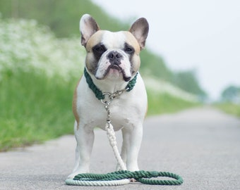 CHOOSE YOUR COLOR - 100% Cotton Rope Dog Collar - Solid Color