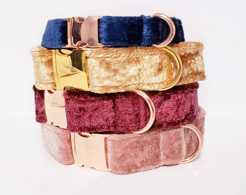 CHOOSE YOUR COLOR  Plush Velvet Dog Collar  purple blue image 0