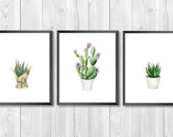 Cactus Watercolor. Cactus art print. Set of 3 prints. Succulent printable art. Blooming cacti art. Botanical print set. Southwestern art.