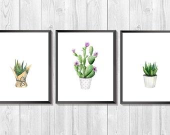 Plant Print Set. succulent watercolor. Set of three prints. Cacti Art. Botanical set. Cactus  art. Kitchen decor. Green Art. Home Gift Idea.