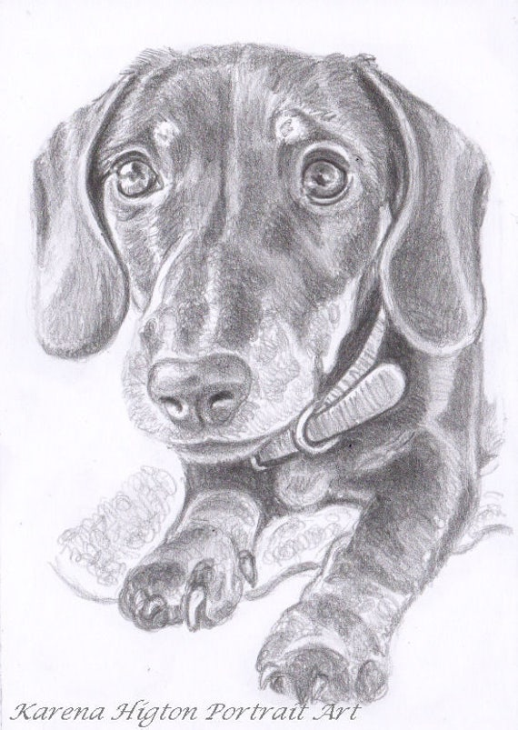 Custom pencil portrait sketch drawing pet family baby child a6 like this item freerunsca Choice Image