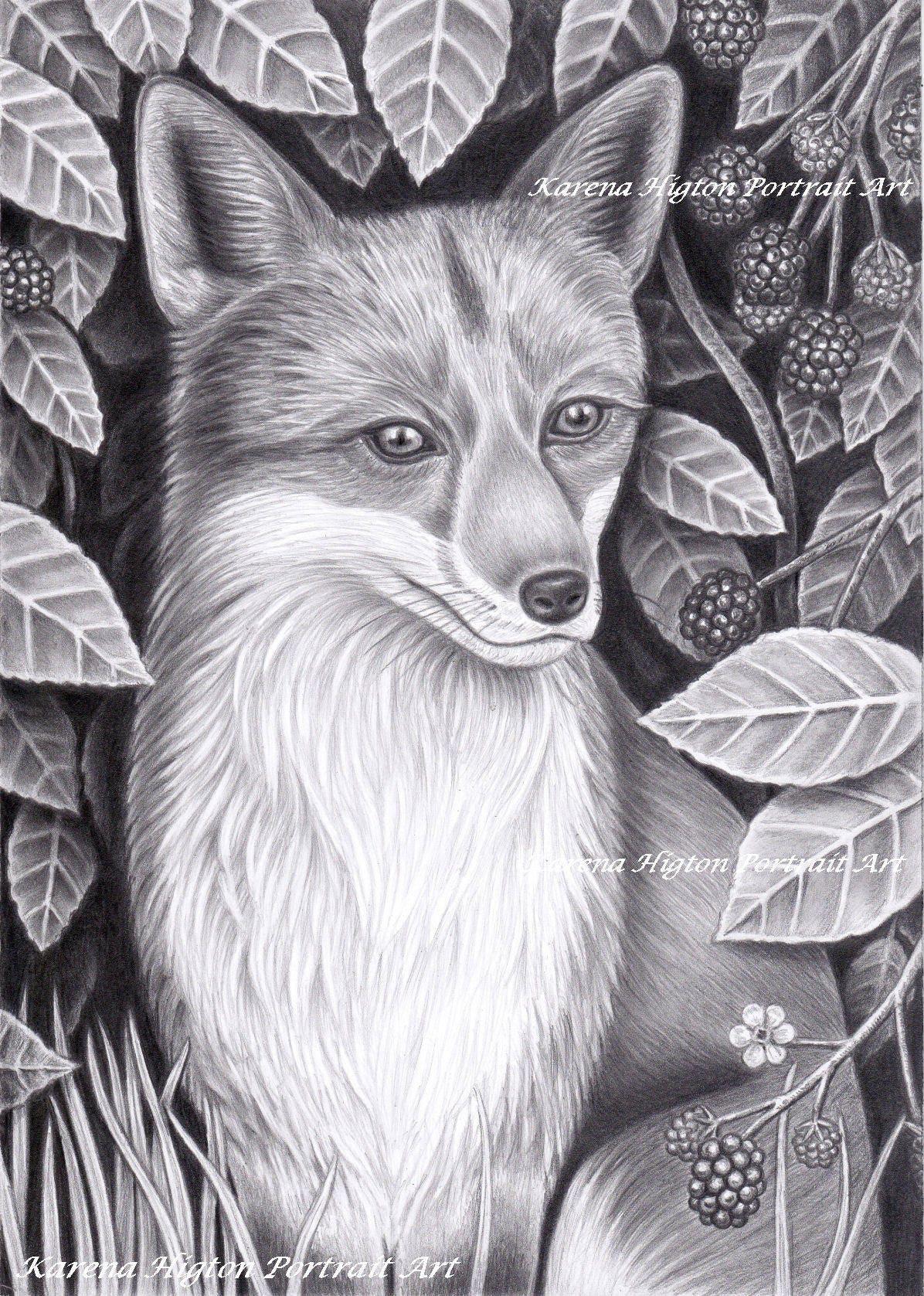 Volpe In Rovi Matita Ritratto Disegno Fauna Originale A4 Da Etsy