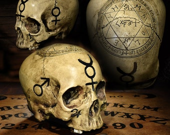 Deluxe painted Realistic Alchemy Skull,   pentagram skull, astrology skull,  Solomon Kabbalah Sigils Astrology Symbols
