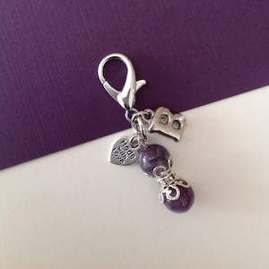 Pet Charm Gemstone Clip On Jewelry for Pets Metaphysical Stone for Pets Pet Jewelry Collar Clip Collar Charm Multi Use Clip On