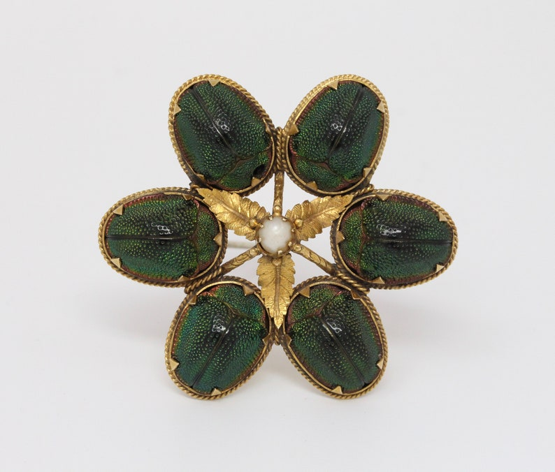 3f3e9c940ce7a Rare Victorian 14K Gold Real Scarab Novelty Brooch Pin