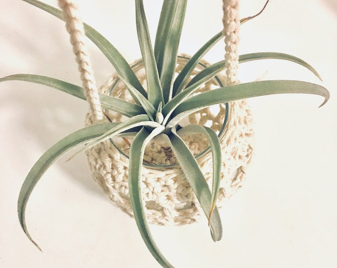 Featured listing image: Hanging Plant Holder