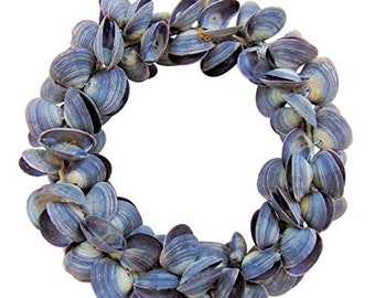 Real Seashell Wreath Blue Shells 6 inches Long