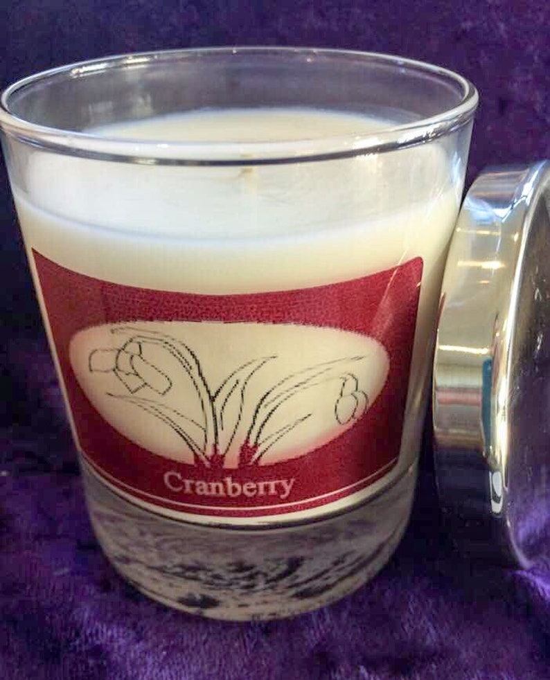 Soy wax Cranberry Container Candle image 0