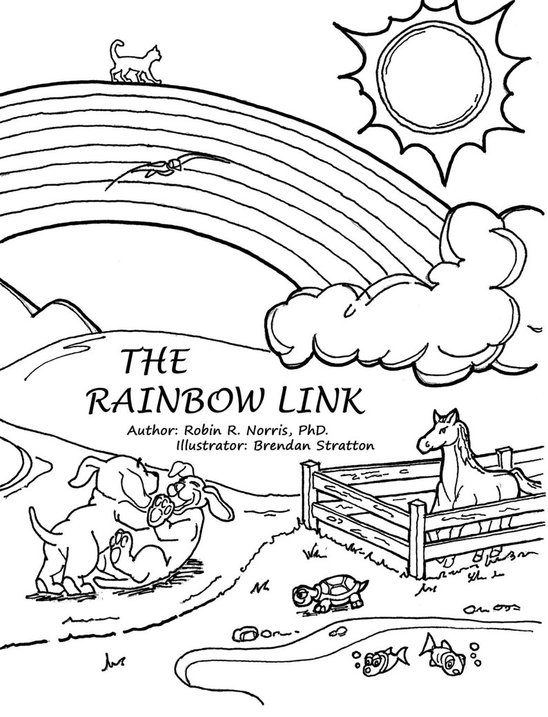 Rainbow Link  Activity Book for Pet Loss image 0
