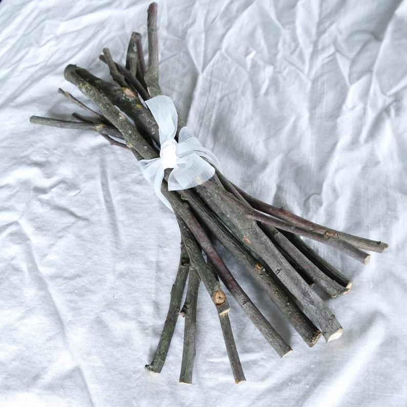 wood craft supply dried Apple sticks wood supply shamanic wood supply Apple tree branches natural wood supply Wood branch Apple sticks