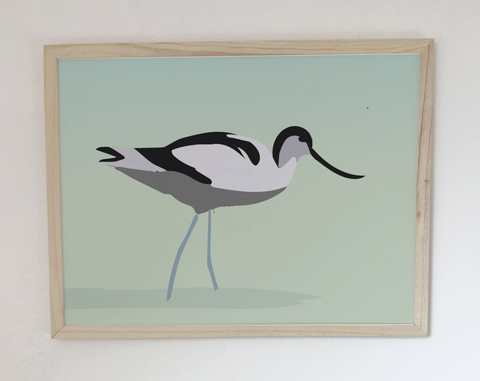 ART PRINT the elegant avocette of didouch bird collection