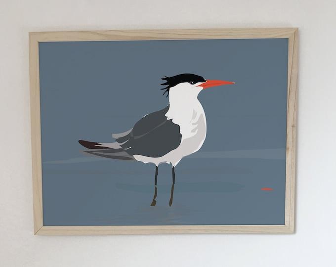ART PRINT the didouch tern collection bird