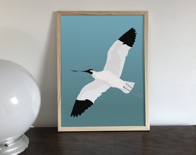 the flight of the elegant didouch avocette displays Art print
