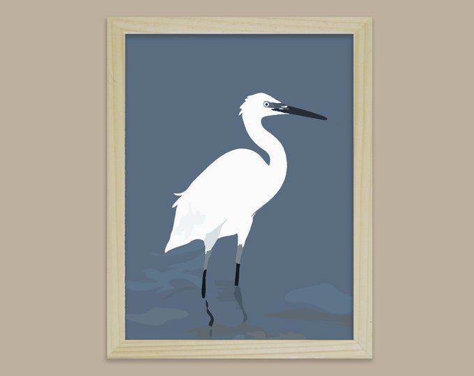 didouch egret displays Art Print