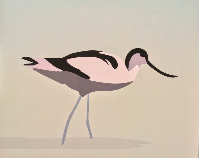 Elegant didouch avocette 30x30 cm - print on paper for decoration - Bird theme Aigrette