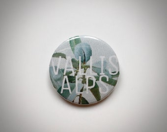Vallis Alpes Pin
