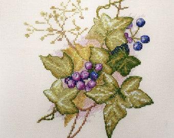 Ivy NC108 pattern by Mirabilia cross stitch pattern