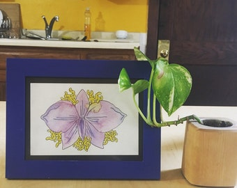 Framed Orchid 2.0!