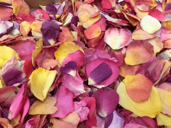 Rose Petals Wedding Petals Freeze Dried Petals Flower Petals Petal Confetti Flower Confetti Flower Girl Petals 10 Cups Petals Petals Usa