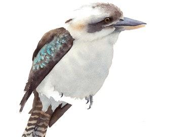 Kookaburra, A4 size, watercolour print, Australian, wildlife, bird wall art