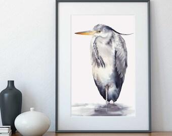 Grey heron, A4 size, watercolour print, Australian, wildlife, bird wall art, watercolor print
