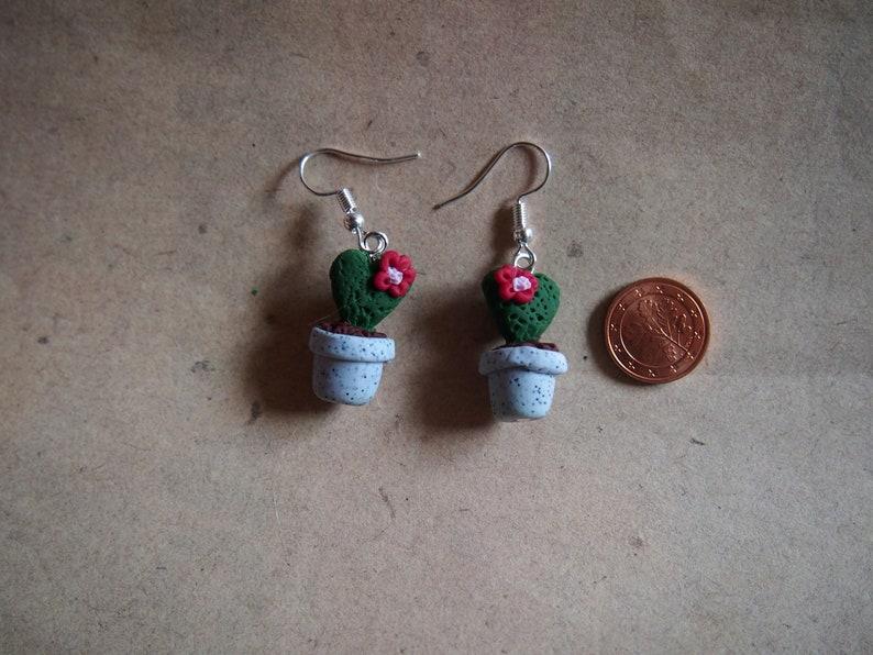 heartplant hoya kerri red houseplant Earrings succulent