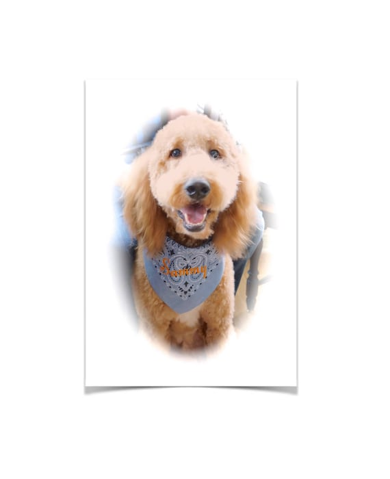 Personalized Large Dog Bandanas