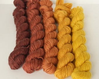 Hand dyed 5 x 20g skeins 'Autumnal' set sock weight weight yarn for knitting and crochet Rhapsodye Yarns