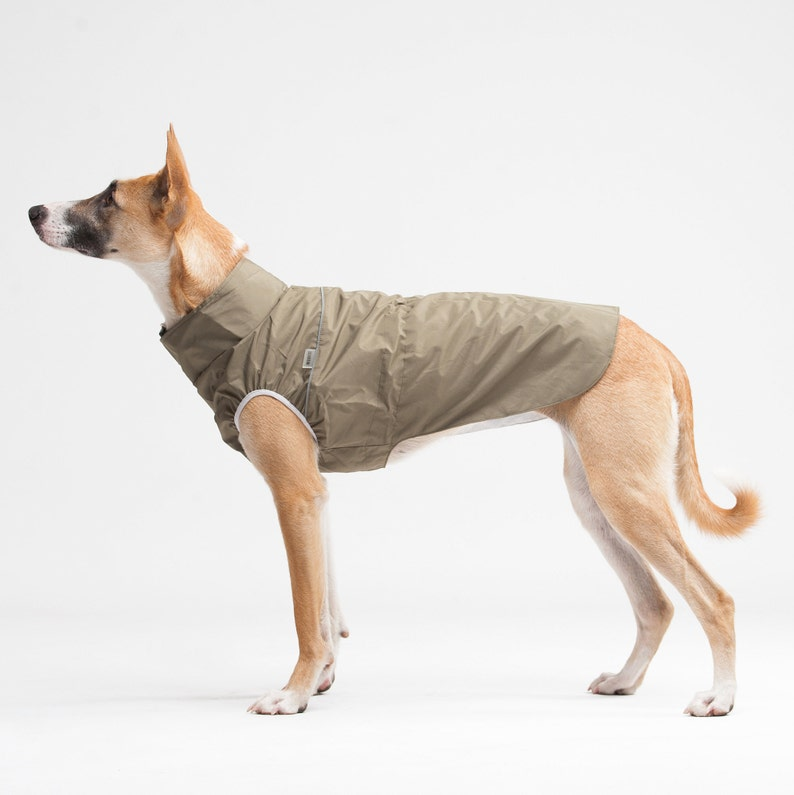 Rain jacket for dog Gift Corgi clothes Clothes for dog Dog wear Raincoat for dog Light jacket Raincoat for corgi