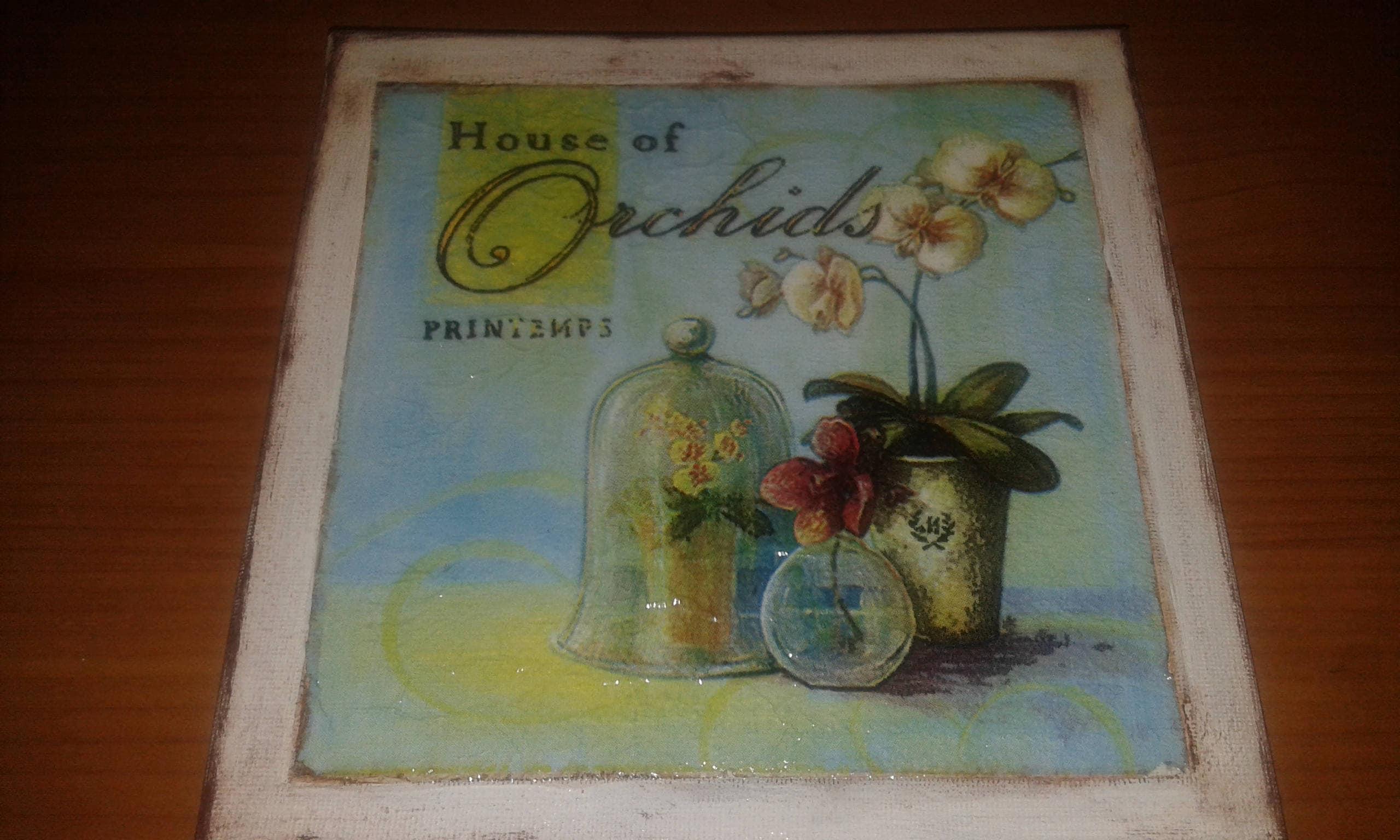 Fioriera per spazi pubblici in metallo fioriera orchidea maxi