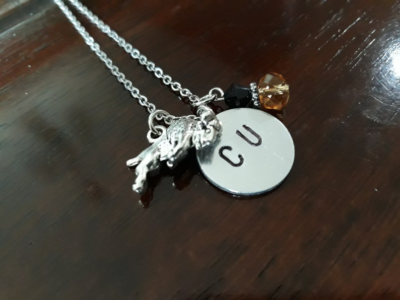 Silver Stainless Steel Necklace University of Colorado Charms University of Colorado Boulder Necklace