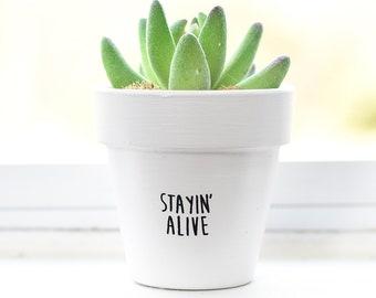Stayin Alive | Plant Pot