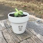 Oh For Succs Sake Succulent Pot