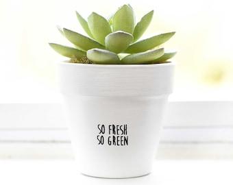 So Fresh So Green | Plant Pot