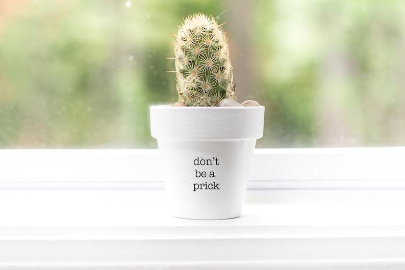 Don't be a Prick  Plant Pot image 1